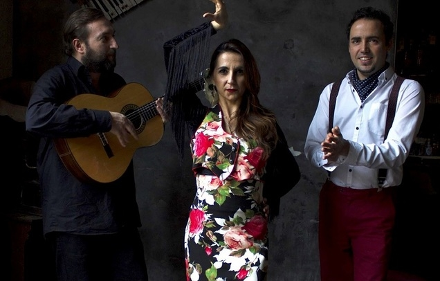 Flamenco with Alma Gitana